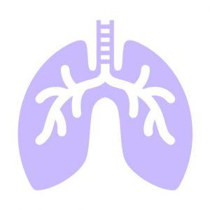 小児の喘息 / 長期管理薬の使い方を徹底解説!